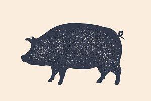 Pig, pork. Vintage logo, retro print