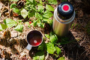 thermos and hot tea in the forest