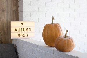 Pumpkins in the interior