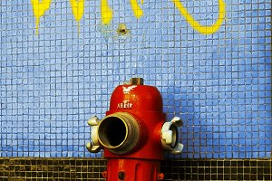 red fire hydrant in the city street