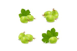 3d Gooseberries with Green Leaves