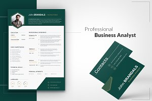 6-in-1 CV for Business Analyst