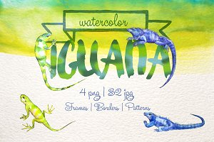 Exotic iguana in a watercolor PNG