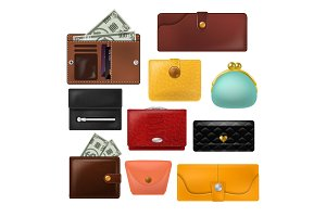 Wallet vector leather purse and