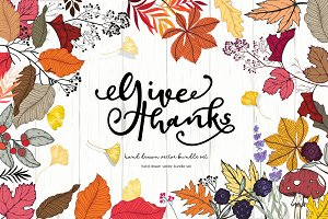 Autumn/Fall for Give Thanks Handdraw