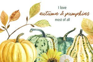 -40%Autumn pumpkins and leaves. Set
