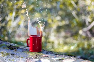 Drink tea in forest