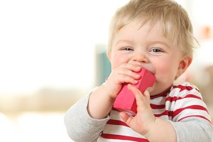 Cheerful baby biting a toy