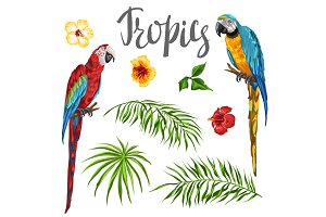 Set of tropical plants and parrots.