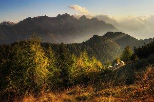 Sheep in the mountains of Trupejevo