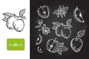 Hand Drawn Apples