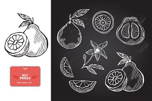 Hand Drawn Pomelos