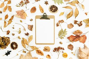Fall background wiht clipboard