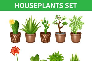 Houseplants realistic icons set