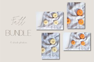Fall Pumpkins Bundle