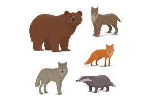Wild fox, badger, lynx, bear icons