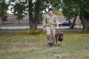 A trainer and his german shepherd
