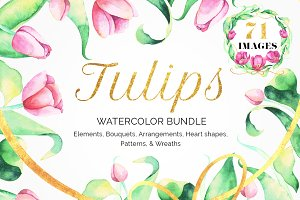Love Me.Tulip Watercolor Collection