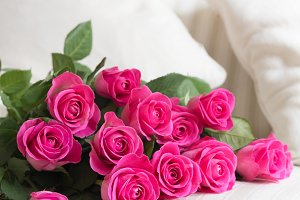 Heap of perfect pink roses on a whit