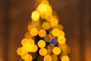 Blur unfocused Christmas tree the bo