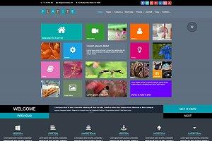 Flatite Creative Joomla Template
