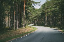 Winding road through forest by  in Transportation