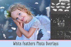 White Feathers Overlays