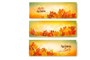 Three Autumn Sale Banners. Vectore