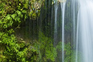 Detail of waterfall with green fern