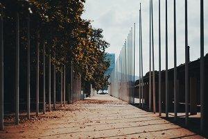 Autumn urban street with flagpoles