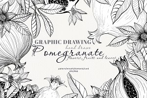 Graphic drawing pomegranate set