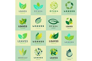Green leaf eco design friendly