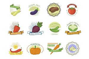 Vegetables badge vector healthy