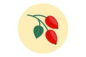 Rosehip icon flat