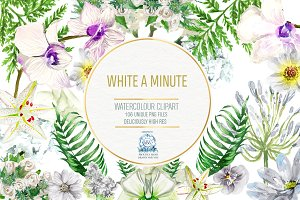 104 White Floral Watercolor Clipart