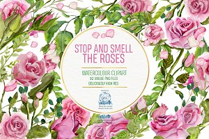 Pink Roses: 92 Watercolor Clipart