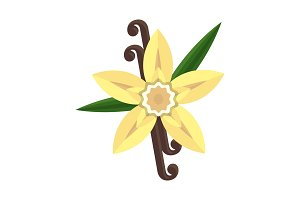Vanilla flower with stitch and