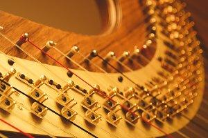 Harp - Close Up