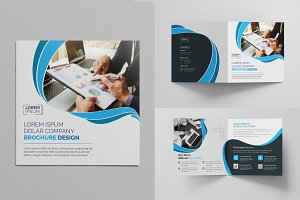 Blue Square Bi-Fold Brochure