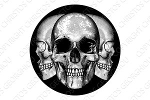 Skulls Graphic Design