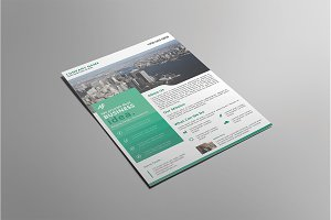 Business Flyer V05