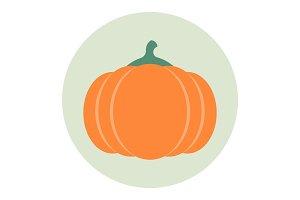 Pumpkin icon flat