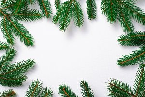 Fir Branches Background, Christmas a