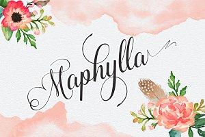 Maphylla