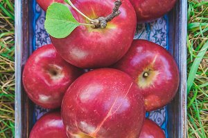 Red ripe apples in the wooden tray,