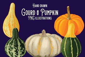 Fall pumpkin & gourd illustrations
