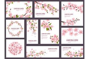 Sakura vector blossom cherry
