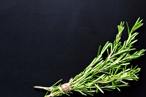 Rosemary on black, copy space