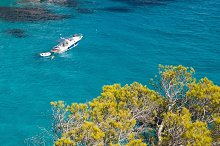 Yacht, sea and pine in Cala Macarell