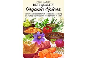 Vector organic spices and herbs
